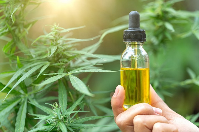 How to Finance Cannabis Oil Extraction Equipment while Keeping Your Equity
